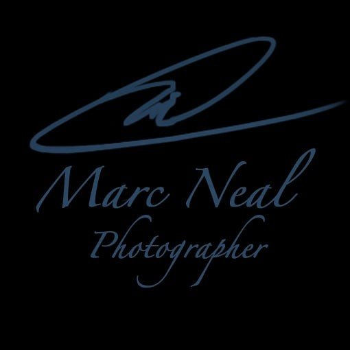 Avatar image of Photographer Marc Neal