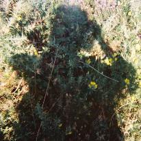 Avatar image of Photographer Andrea Otero