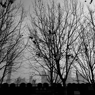 libutti7 photo: 1