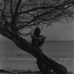 Avatar image of Photographer Karl Angay