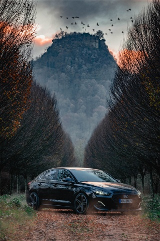 Portfolio Cars photo: 1