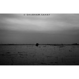 shubham.sahay photo: 1