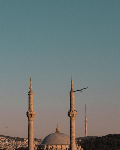 bu.ku.ku photo: 0