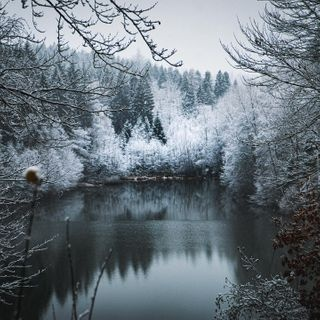 blue amazing beautiful winter lake forest nature naturephotography instagood instagram instadaily love happy photographer picture photooftheday sony sonyalpha sonyphotography sonyalphasclub travelphotography travel explore color