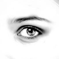 Avatar image of Photographer Polina  Logatskaya