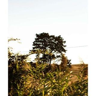 pietro1q84 photo: 2