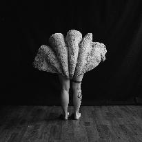 Avatar image of Photographer Alexandre Jais