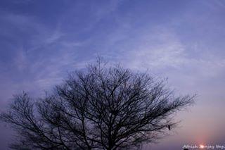 athish_sanjay photo: 2
