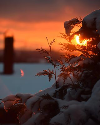 afternoon chillout colorful home lights rooftop sky snow snowy sun sunset sverige sweden winter