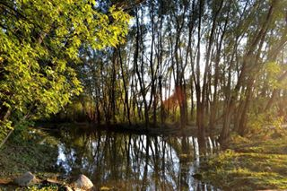 beautifulplaces lubiepolske mojawarszawa natura nature naturelovers sunset wagabond wanderer wanderlust warsaw warszawa warszawawa wisła wybrzeżepuckie
