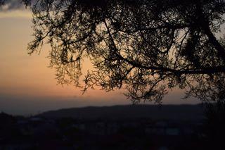 draganaserbiaa photo: 0