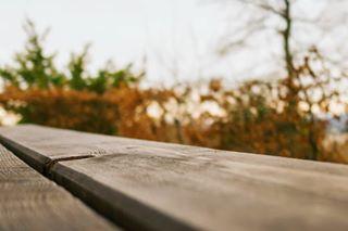 slavalicious_photography photo: 0