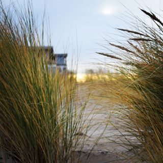 balticsea beach düne ilovemv latergram mecklenburgvorpommern nature naturegram naturelover ostsee sand sky skyporn strand sun sunset warnemünde