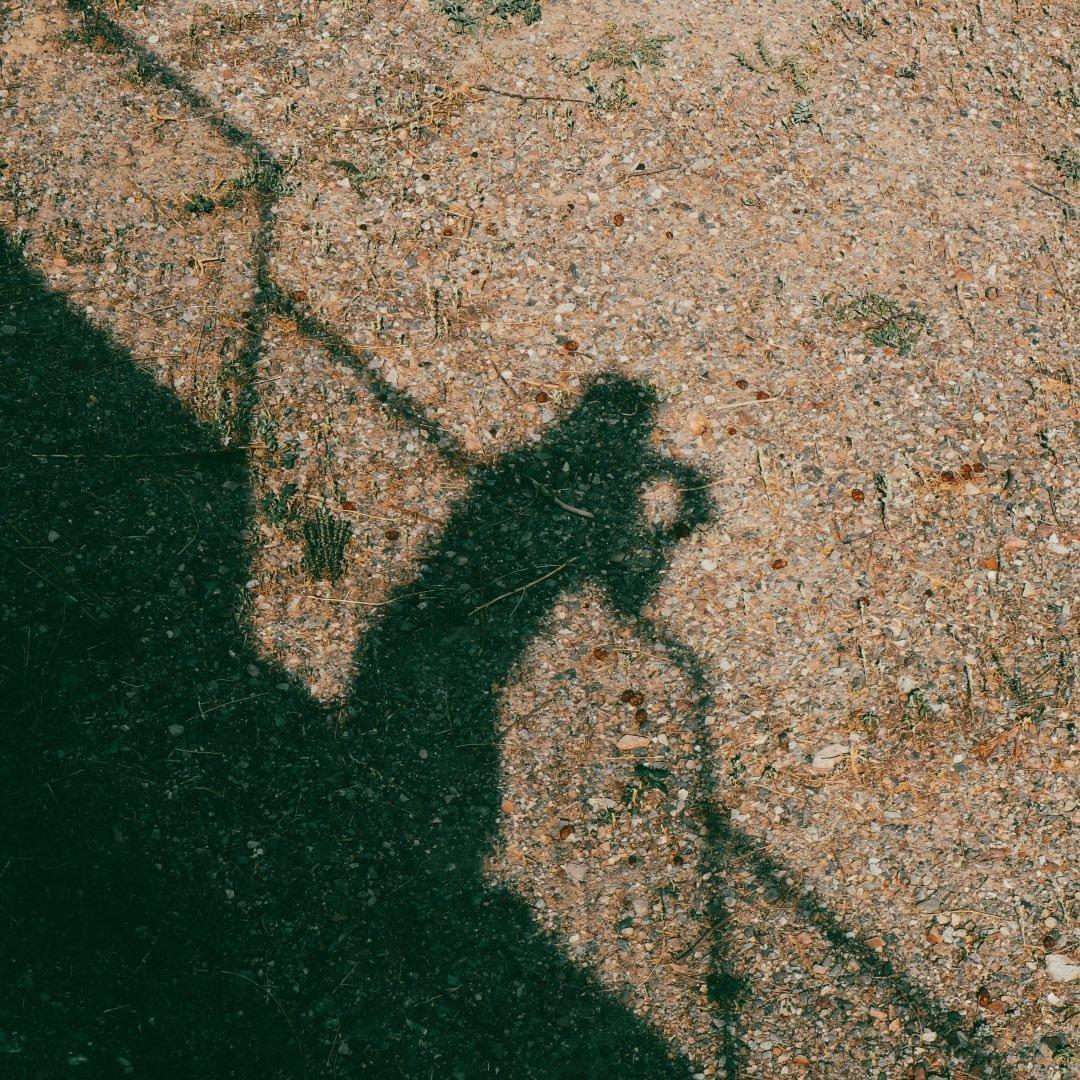 Avatar image of Photographer Anna Fontanet