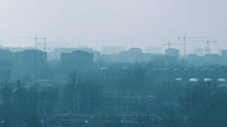 panjkovicmina photo: 1