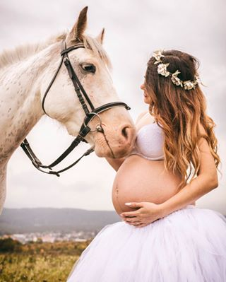 babybauchfotos murmelmittwoch pferd