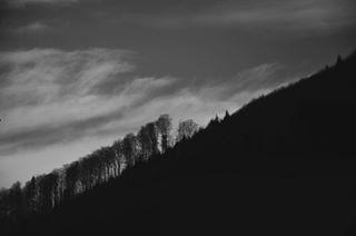 luna.ilaria photo: 2