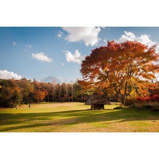 anniversary autumn fuji happiness japan landscape memories nikond5000 nikonjapan photography travel travellingalone wanderlust