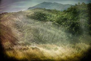 dalwenphotography photo: 2