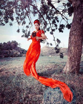 amandagrilphotography photo: 2