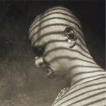 Avatar image of Photographer Daniel Truta