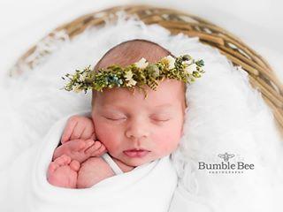 bumblebeebaby_photography photo: 2
