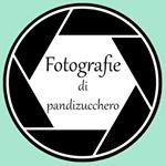 Avatar image of Photographer Fotografie Pandizucchero