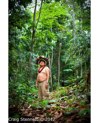 amazon brazil endangered surui tribe