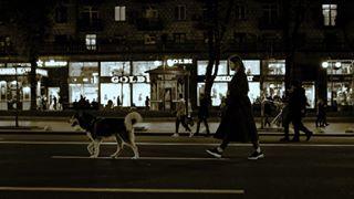 bw husky khreshchatyk kiev street streetphotography sutrurday walk