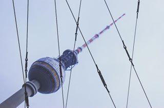 sonaralf photo: 1