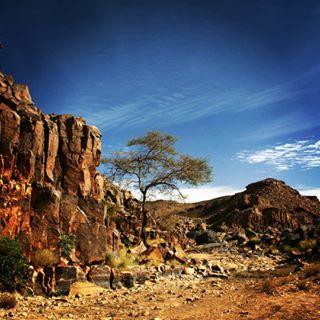 4x4 adventure algeria algerie algerien algieria desert expedition exploring gdawiec journey overlander overlanding overlandinglife podroze podróże przygoda roadtrip sahara saharaoverland tassilinajjer tomekgdawiec travel trip wyprawa wyrypasahara
