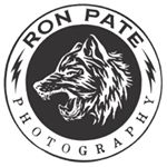 Avatar image of Photographer Ron Pate