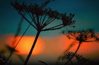 wmb__photography photo: 1