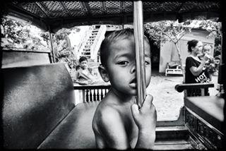 gregoryherpephotographe photo: 2