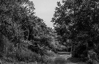 andrejhlozan_photography photo: 2