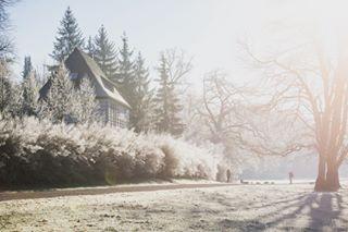 germanytoday nikonphotography photojournalism pictureoftheday weimar winter winterwonderland