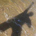 Avatar image of Photographer Mike Nekim