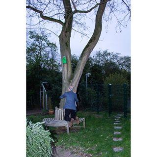 art death documentary human life love photo photography tree