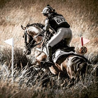 eventing_images photo: 2