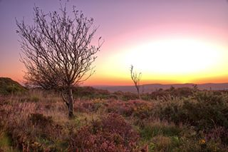landscape_photoventures photo: 1