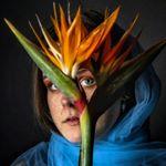 Avatar image of Photographer Iris Verploegen