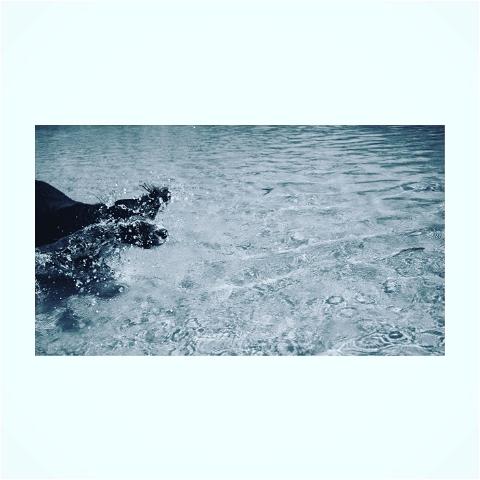 mancey_photography photo: 0