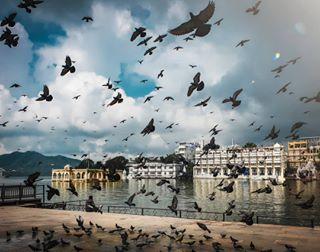 rishabhlakraa photo: 0
