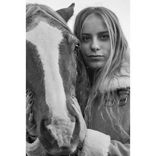equestrian equine equinephotographer horse horsephotography
