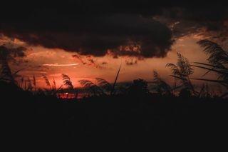 alexravxnoldi photo: 0
