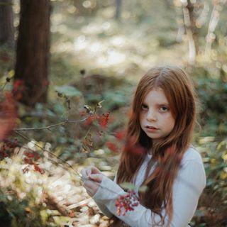 gingerlillytea photo: 1