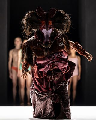 berlin dance dancephotography emanuelgatdance jubalbattistiphotography movement performance performingarts staatsballettberlin theyaredancin volksbuehneberlin
