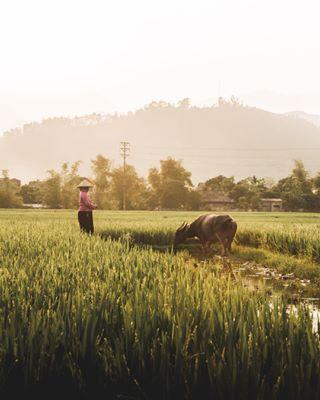 asia discover landscape peace people sunset travel vietnam
